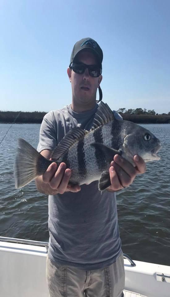Seahawk charters fishing report 39 s from cbfishing com for Fishing charters carolina beach nc
